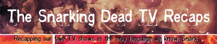 The Snarking Dead TV Recaps long banner