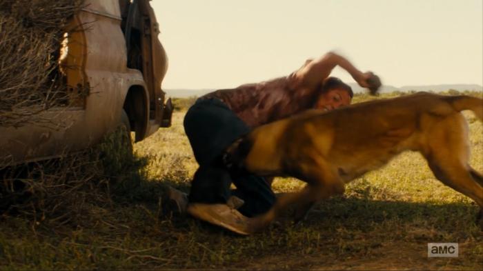 [Image via AMC] #FearTheWalkingDead #Season2 #Grotesque