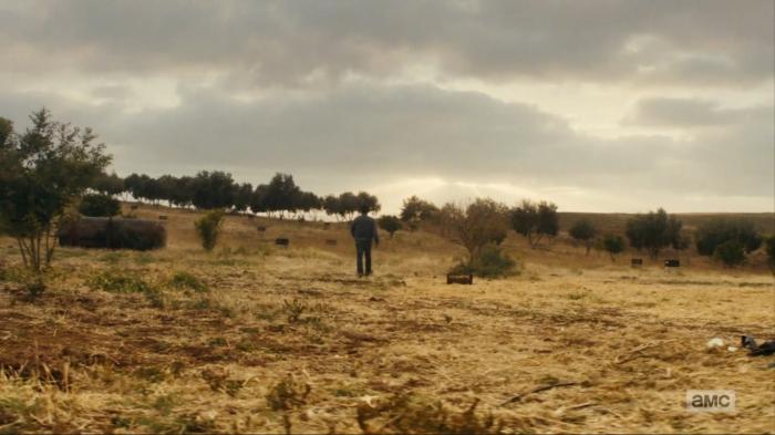 [AMC Fear the Walking Dead Season 2 Episode 13 Date of Death]