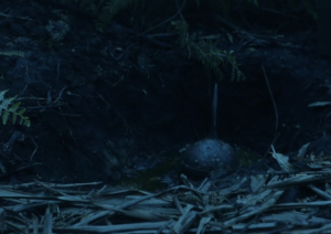 Showcase's The Kettering Incident Season 1 Episode 7 Madness Spiky sphere found at Mother Sullivan's Ridge