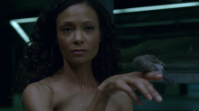 HBO's 'Westworld,' Season 1, Episode 5, Maeve and the sparrow